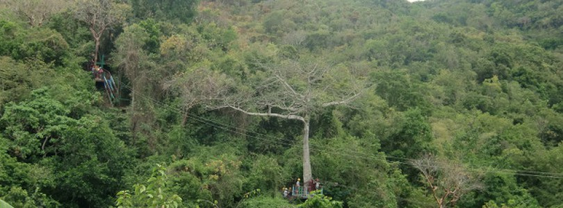 Ausflugs-Check: Abenteuerparcours im Regenwald mit AIDA Cruises