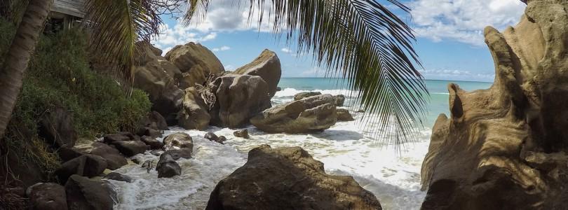 Grenada & Barbados: Impressionen unserer Tagesausflüge