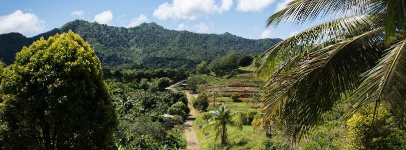 Reisebericht: Karibische Inseln mit AIDAdiva