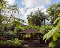 Martinique: Unser Tagesausflug im Video
